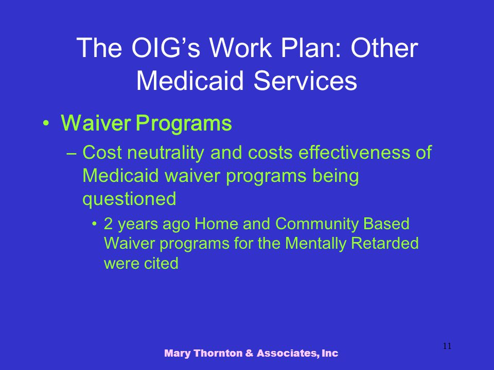 The OIG's Work Plan: Other Medicaid Services