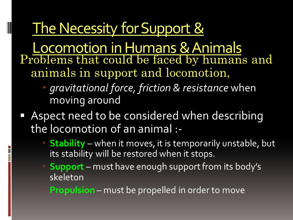 The Necessity for Support & Locomotion in Humans & Animals