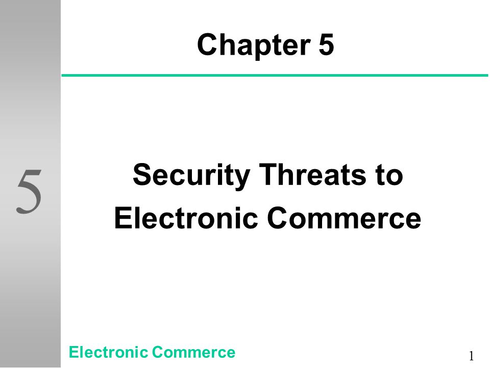 Chapter 5 Security Threats to Electronic Commerce