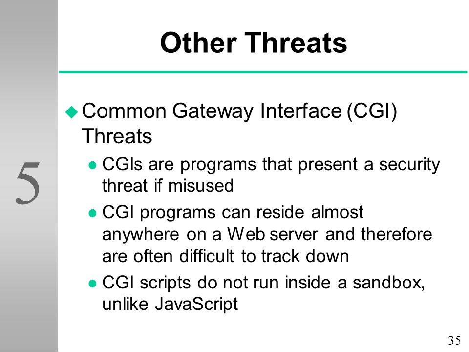 Other Threats Common Gateway Interface (CGI) Threats