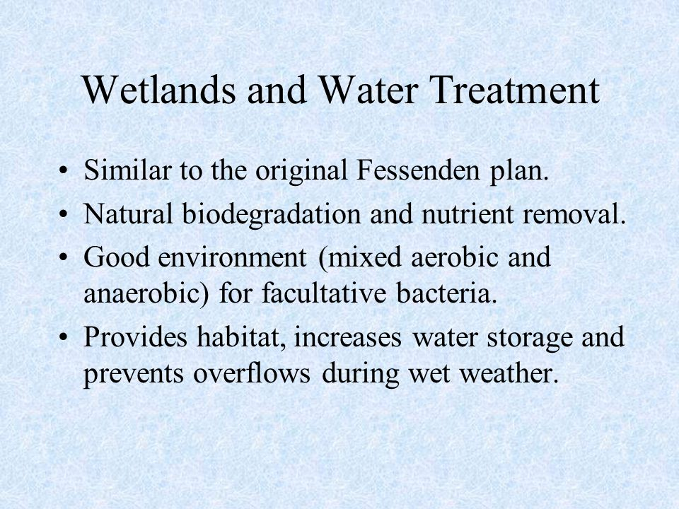 Wetlands and Water Treatment