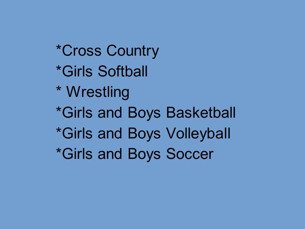 *Cross Country *Girls Softball. * Wrestling. *Girls and Boys Basketball. *Girls and Boys Volleyball.
