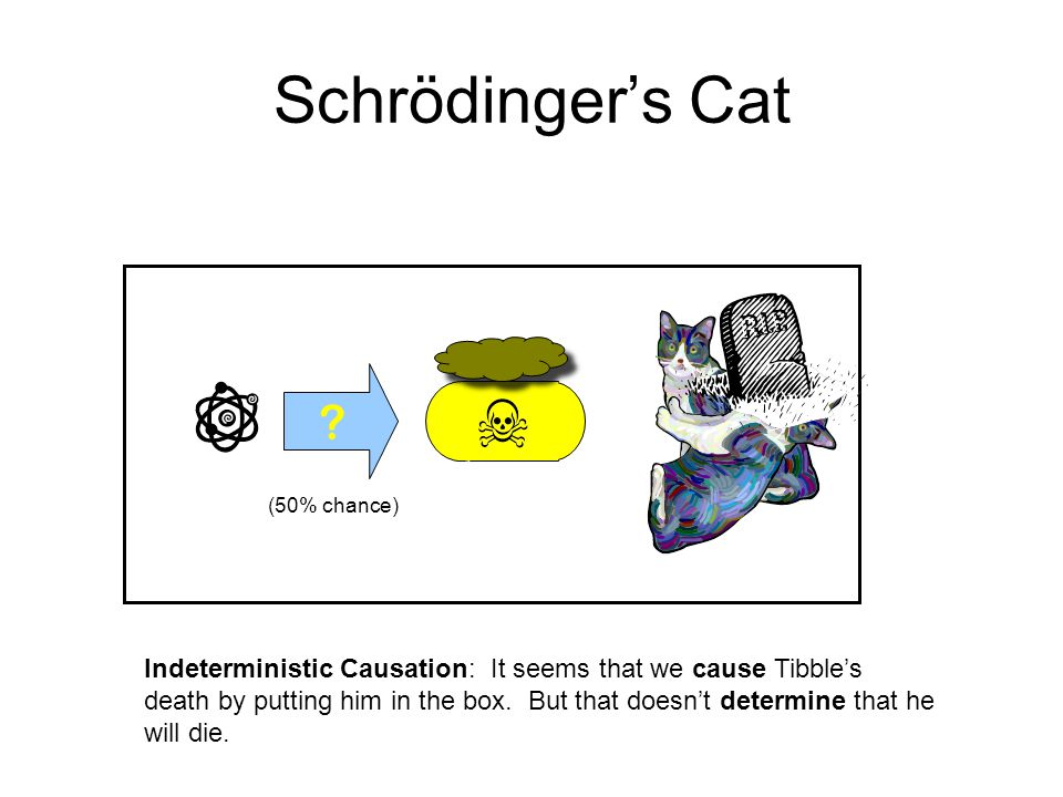 Schrödinger's Cat (50% chance)