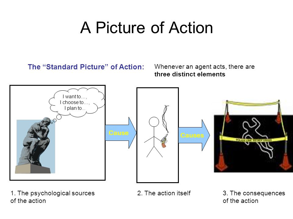 A Picture of Action The Standard Picture of Action: