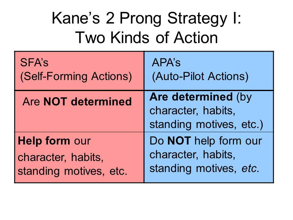 Kane's 2 Prong Strategy I: Two Kinds of Action