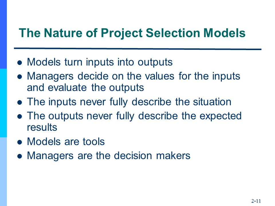 The Nature of Project Selection Models