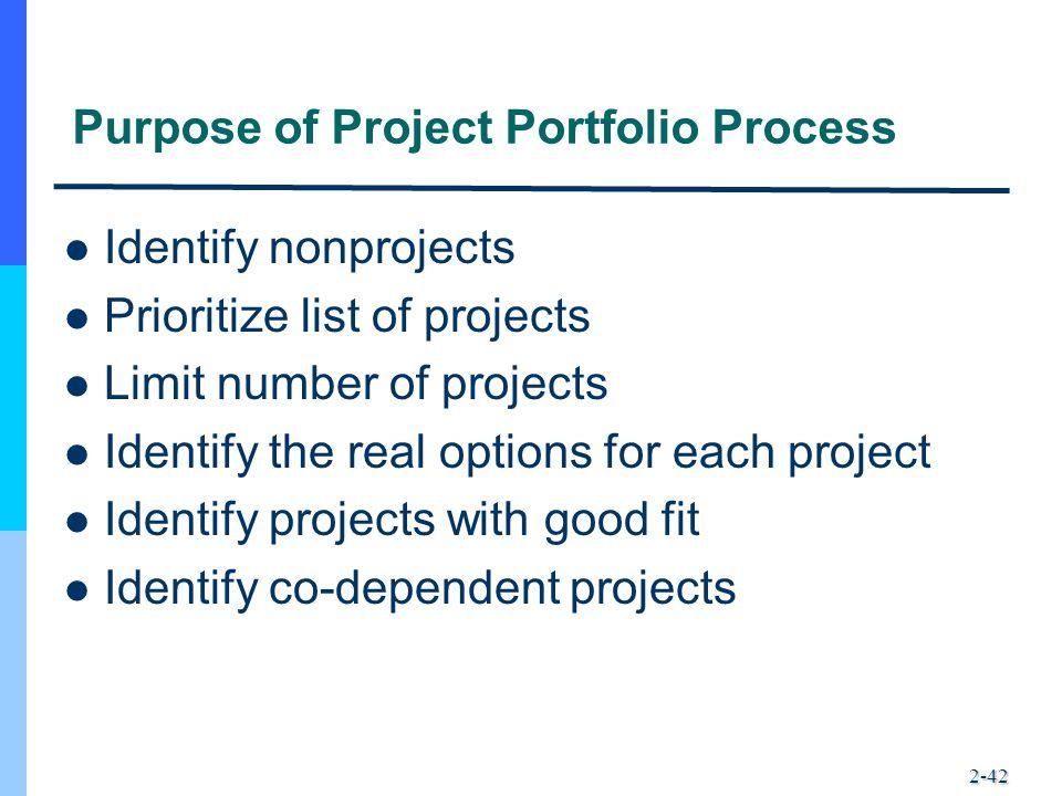 Purpose of Project Portfolio Process
