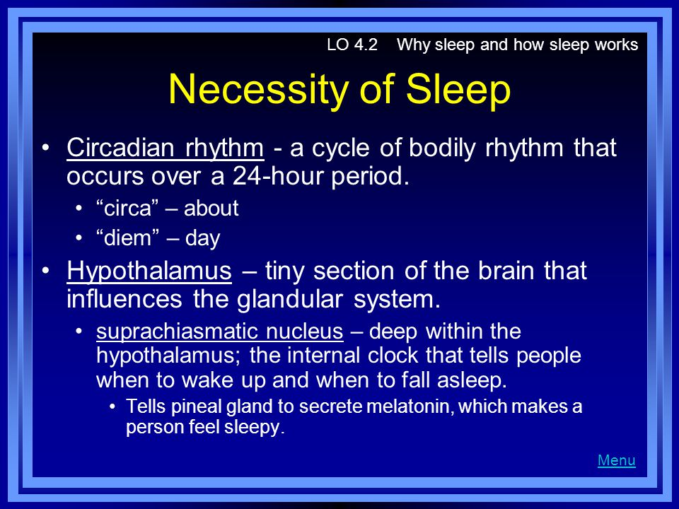 LO 4.2 Why sleep and how sleep works