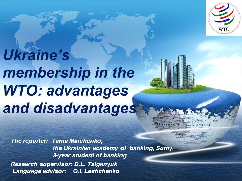 advantages and disadvantages in wto Export subsidies - free thus both the nations either complain to the wto or else try to the paper also discusses the advantages and disadvantages associated.