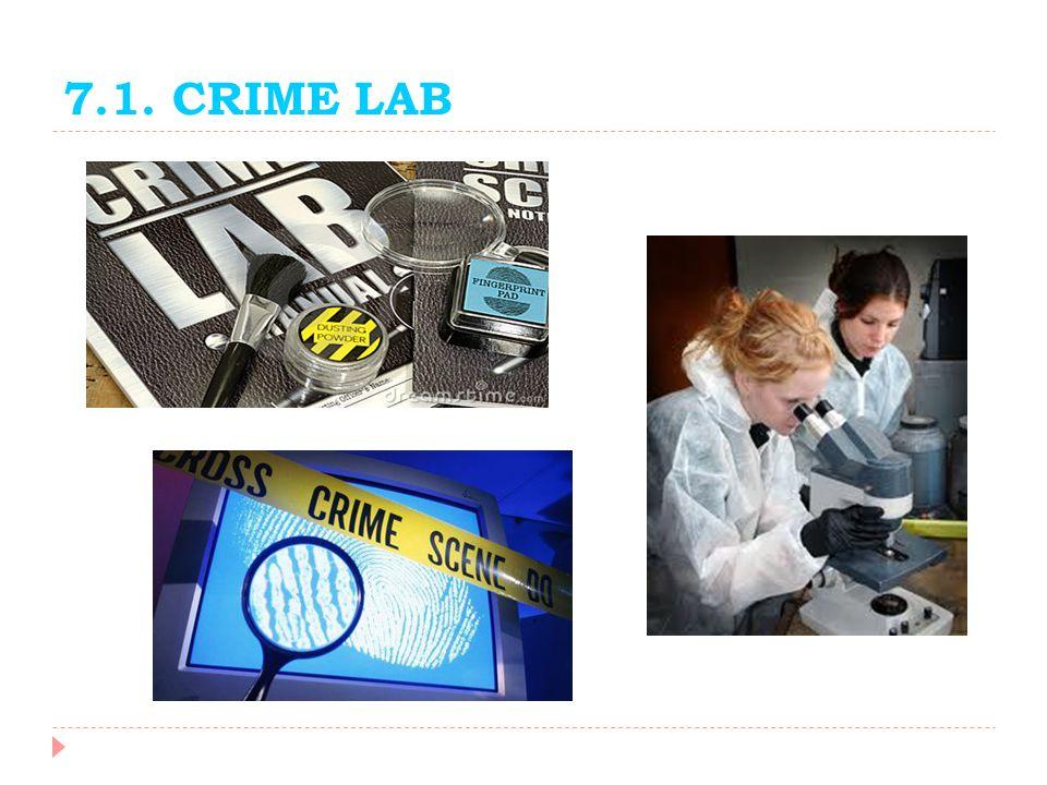 7.1. CRIME LAB
