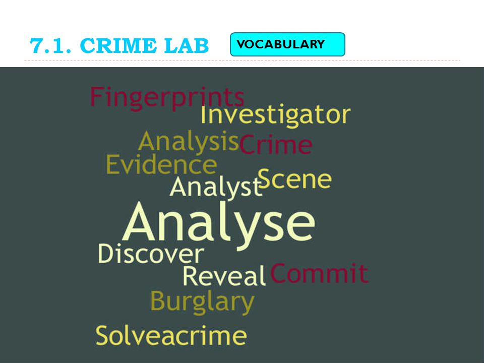 7.1. CRIME LAB VOCABULARY