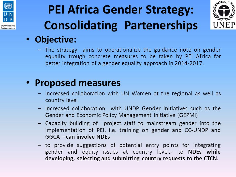 PEI Africa Gender Strategy: Consolidating Partenerships