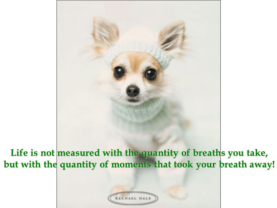 Life is not measured with the quantity of breaths you take, but with the quantity of moments that took your breath away!