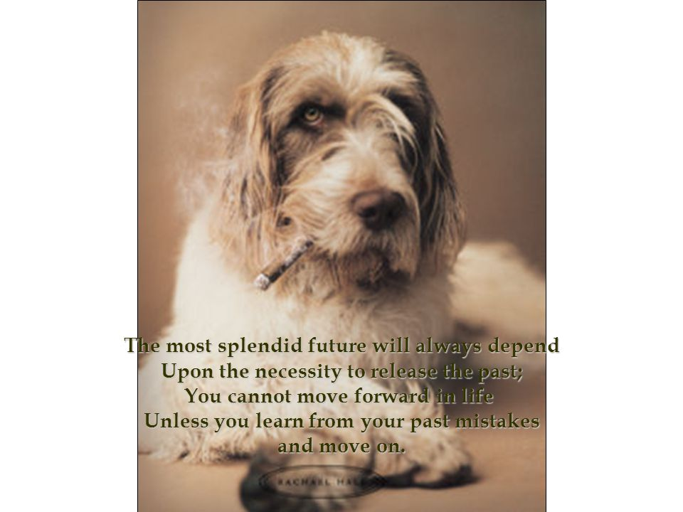 The most splendid future will always depend