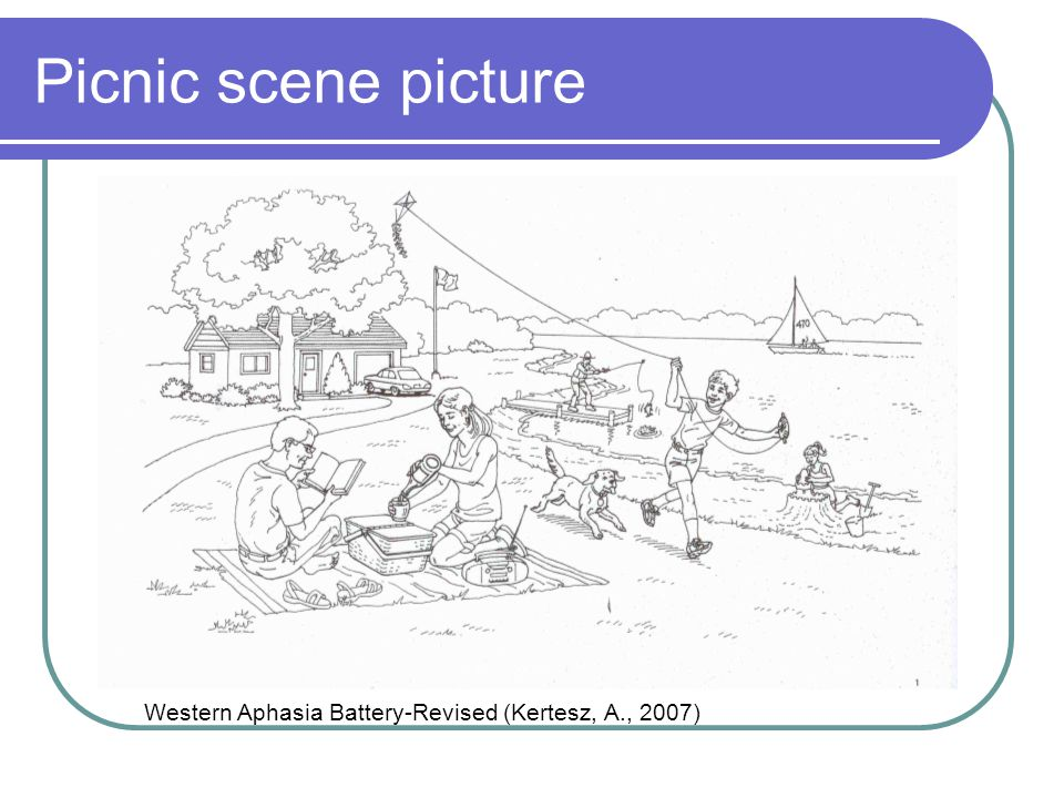 Picnic scene picture Western Aphasia Battery-Revised (Kertesz, A., 2007)