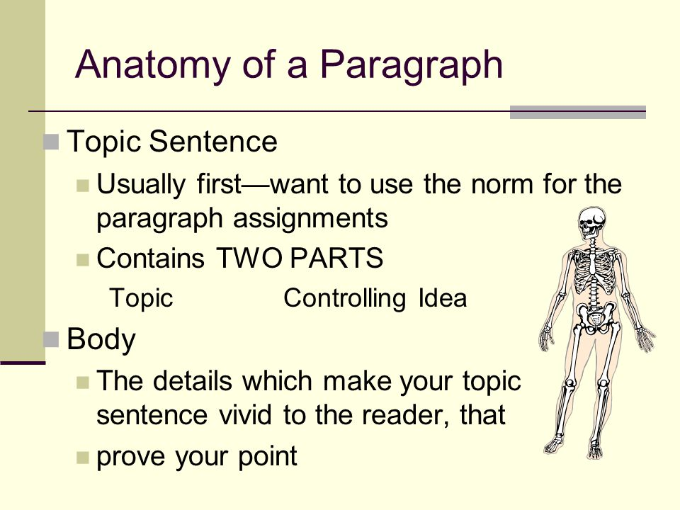 Anatomy of a Paragraph Topic Sentence Body