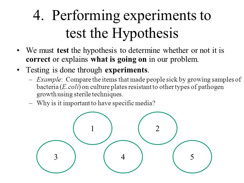 4. Performing experiments to test the Hypothesis
