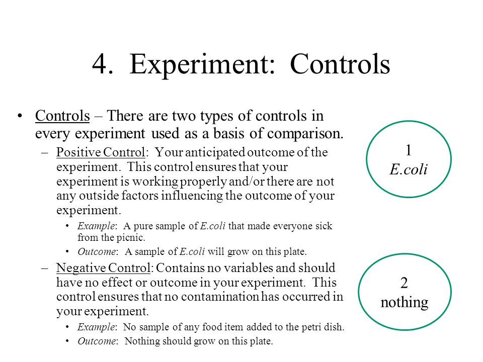 4. Experiment: Controls Controls – There are two types of controls in every experiment used as a basis of comparison.