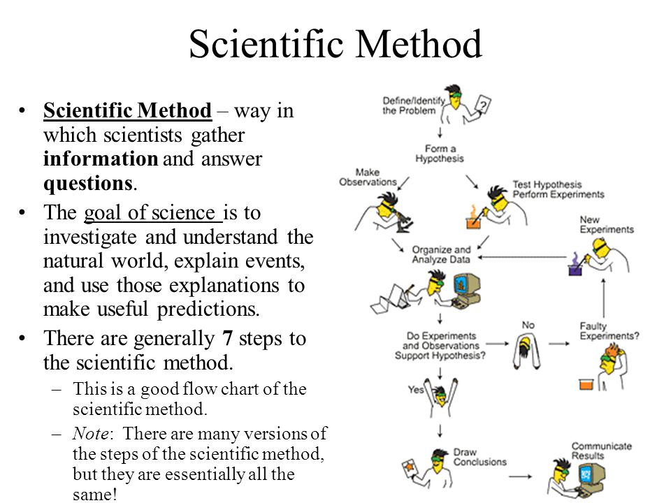 Scientific Method Scientific Method – way in which scientists gather information and answer questions.