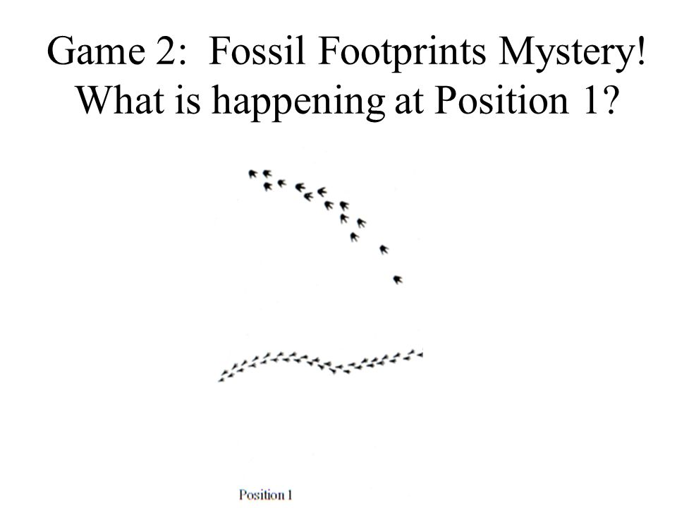 Game 2: Fossil Footprints Mystery! What is happening at Position 1