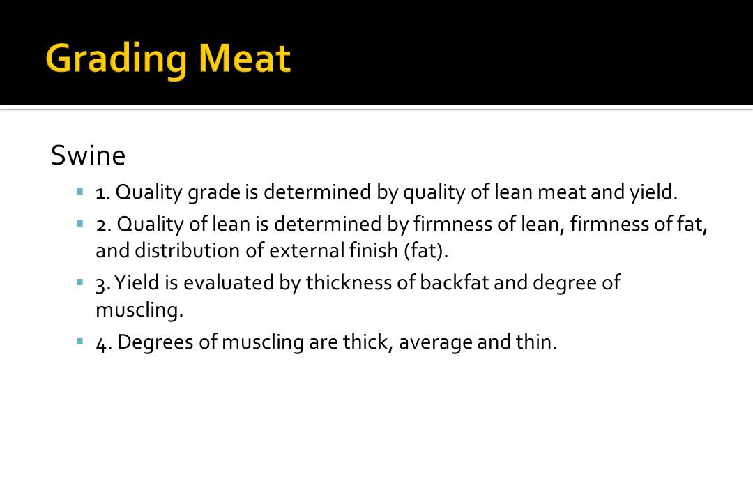 Grading Meat Swine. 1. Quality grade is determined by quality of lean meat and yield.