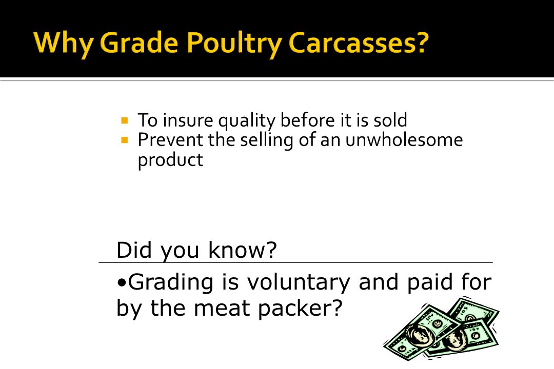 Why Grade Poultry Carcasses