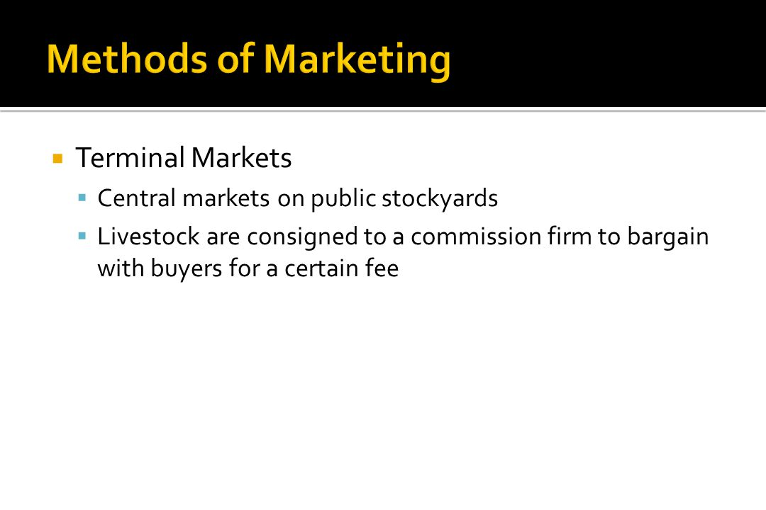 Methods of Marketing Terminal Markets