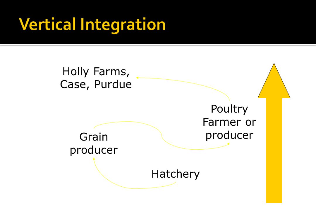 Vertical Integration Holly Farms, Case, Purdue
