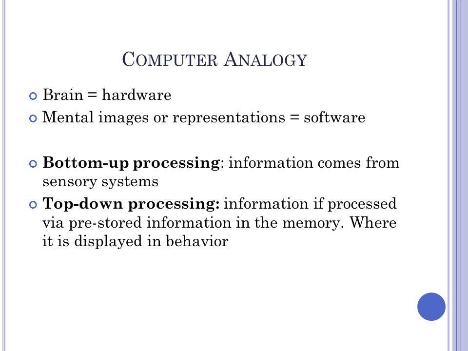 Computer Analogy Brain = hardware
