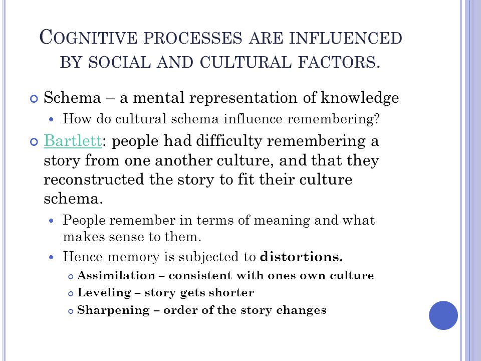Cognitive processes are influenced by social and cultural factors.