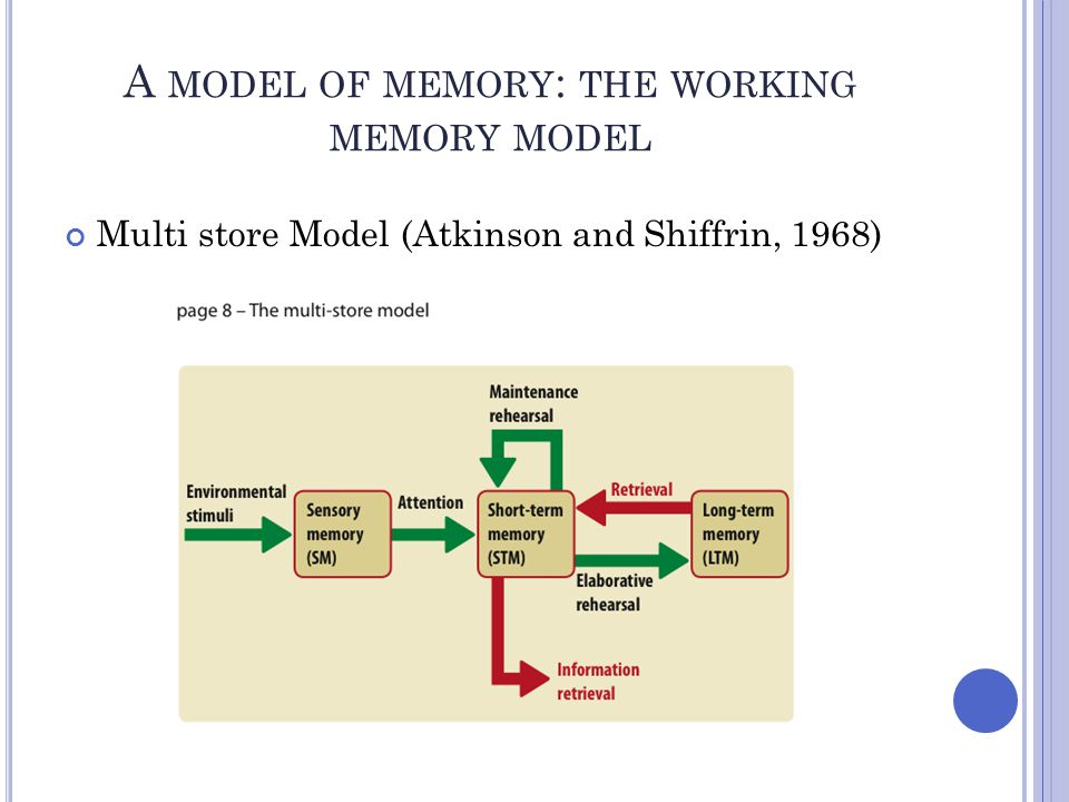 A model of memory: the working memory model