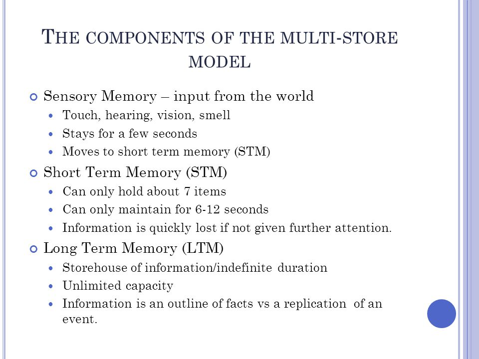 The components of the multi-store model