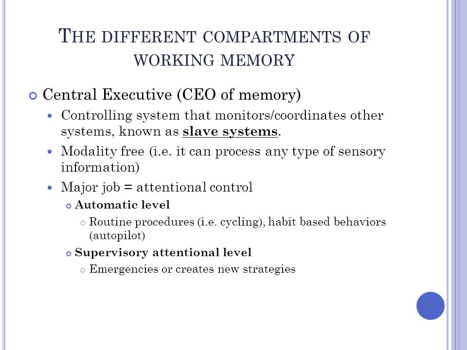 The different compartments of working memory