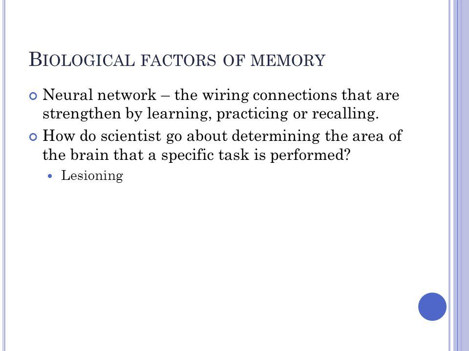 Biological factors of memory