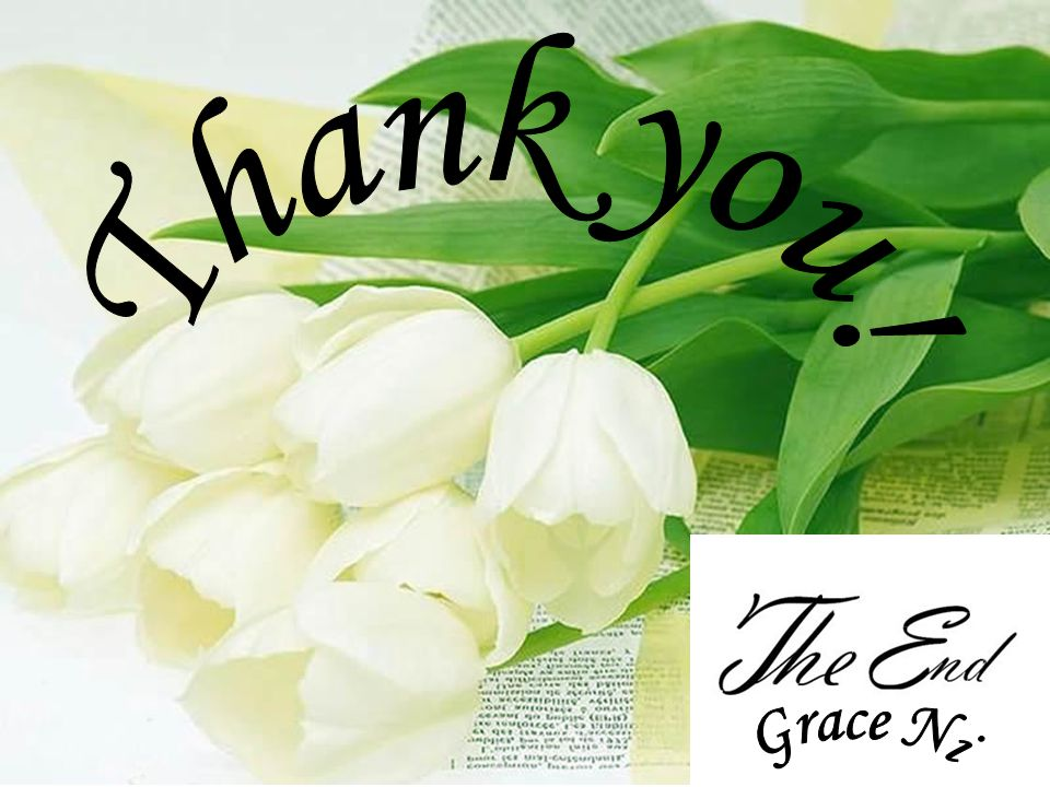 Thank you! Grace Ni
