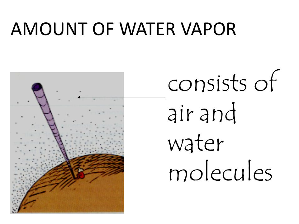consists of air and water molecules
