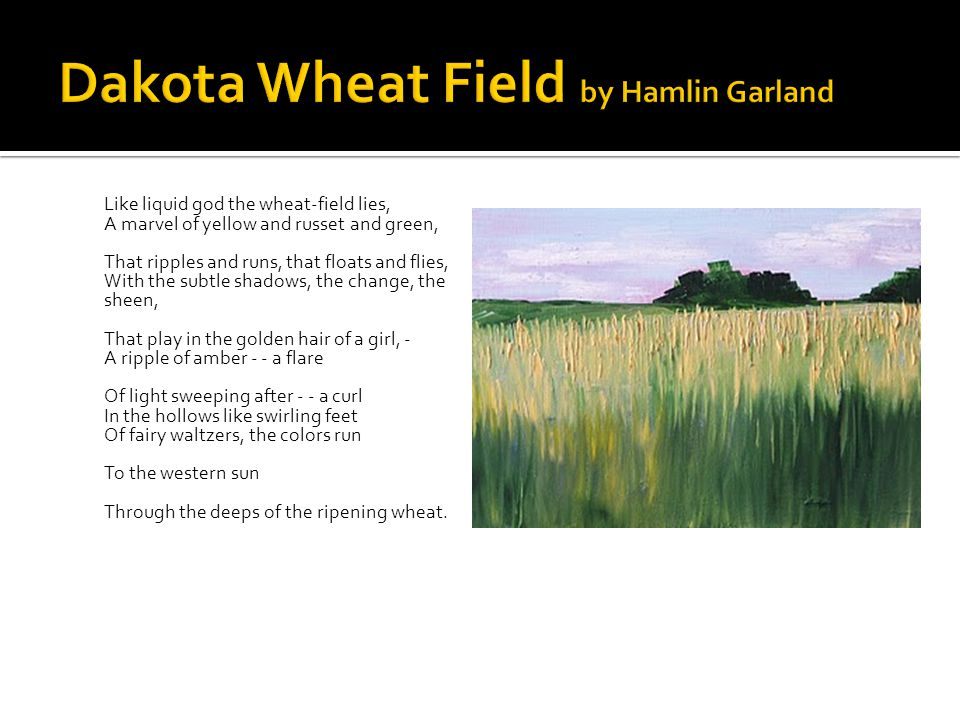 Dakota Wheat Field by Hamlin Garland