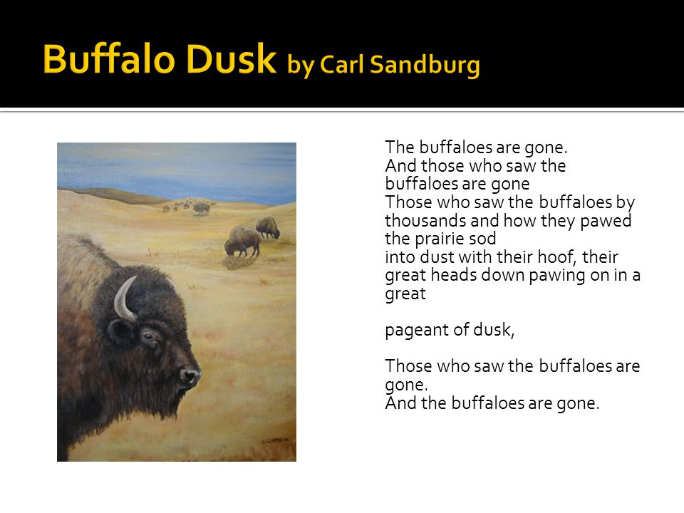 Buffalo Dusk by Carl Sandburg