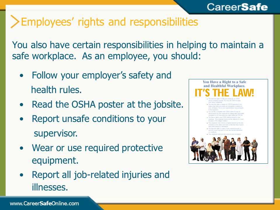 Employees' rights and responsibilities
