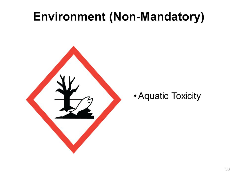 Environment (Non-Mandatory)