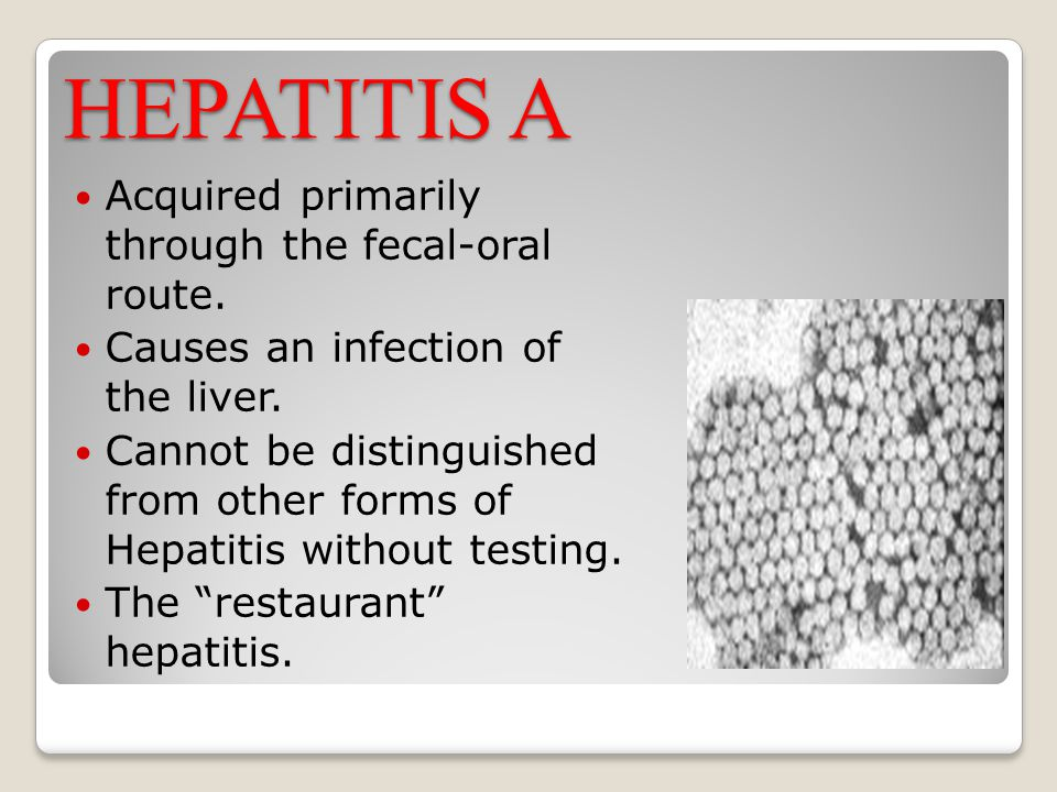 HEPATITIS A Acquired primarily through the fecal-oral route.
