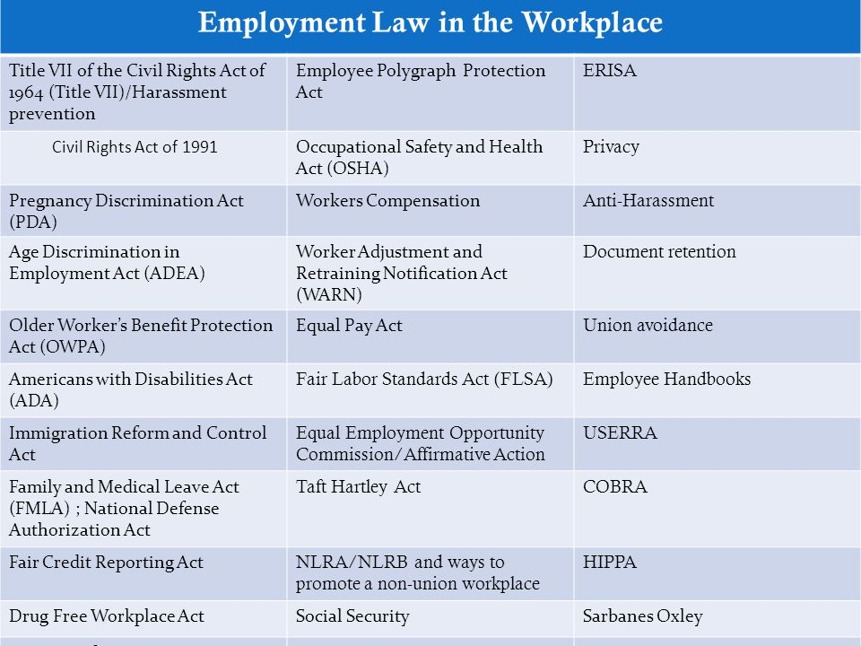 Employment Law in the Workplace