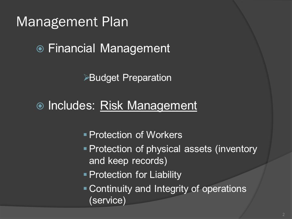 Management Plan Financial Management Includes: Risk Management