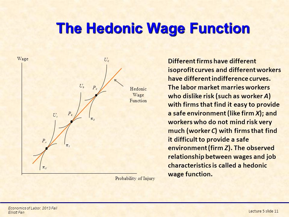 The Hedonic Wage Function