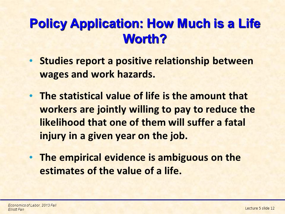 Policy Application: How Much is a Life Worth