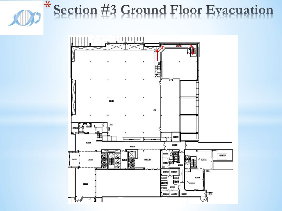Section #3 Ground Floor Evacuation