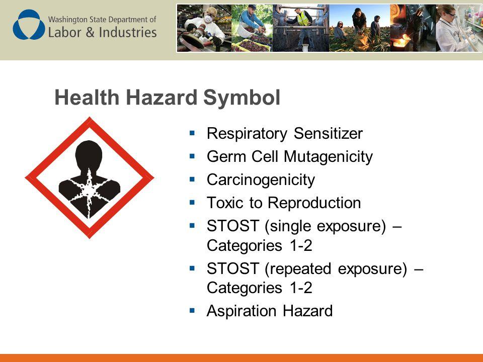 Health Hazard Symbol Respiratory Sensitizer Germ Cell Mutagenicity