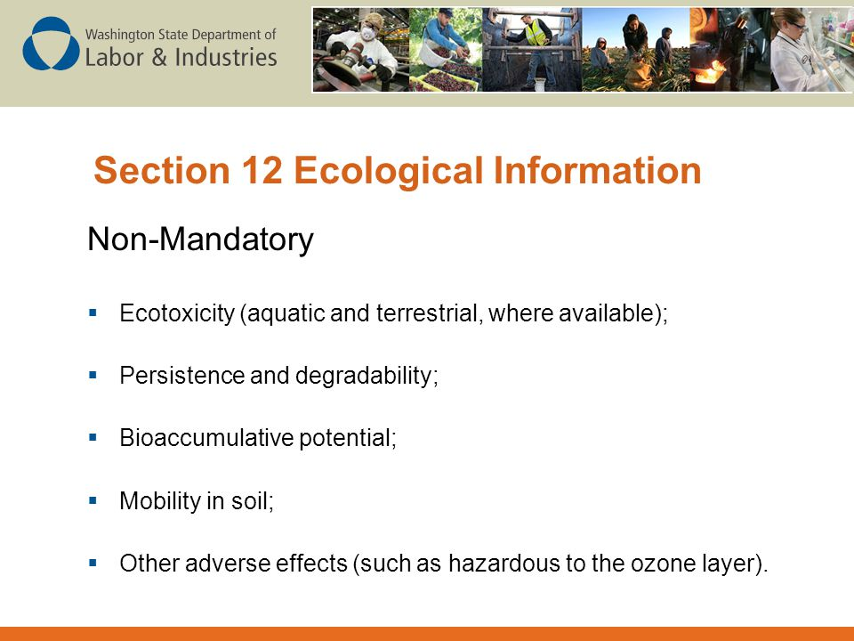 Section 12 Ecological Information