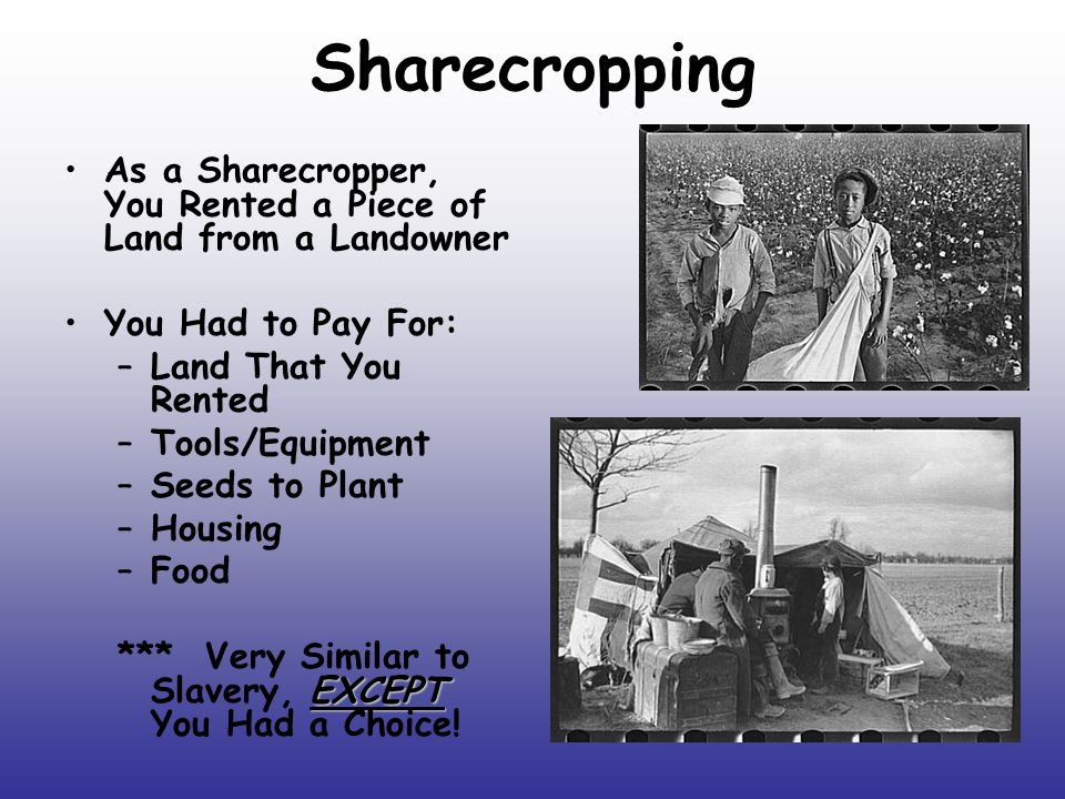 Sharecropping As a Sharecropper, You Rented a Piece of Land from a Landowner. You Had to Pay For: Land That You Rented.