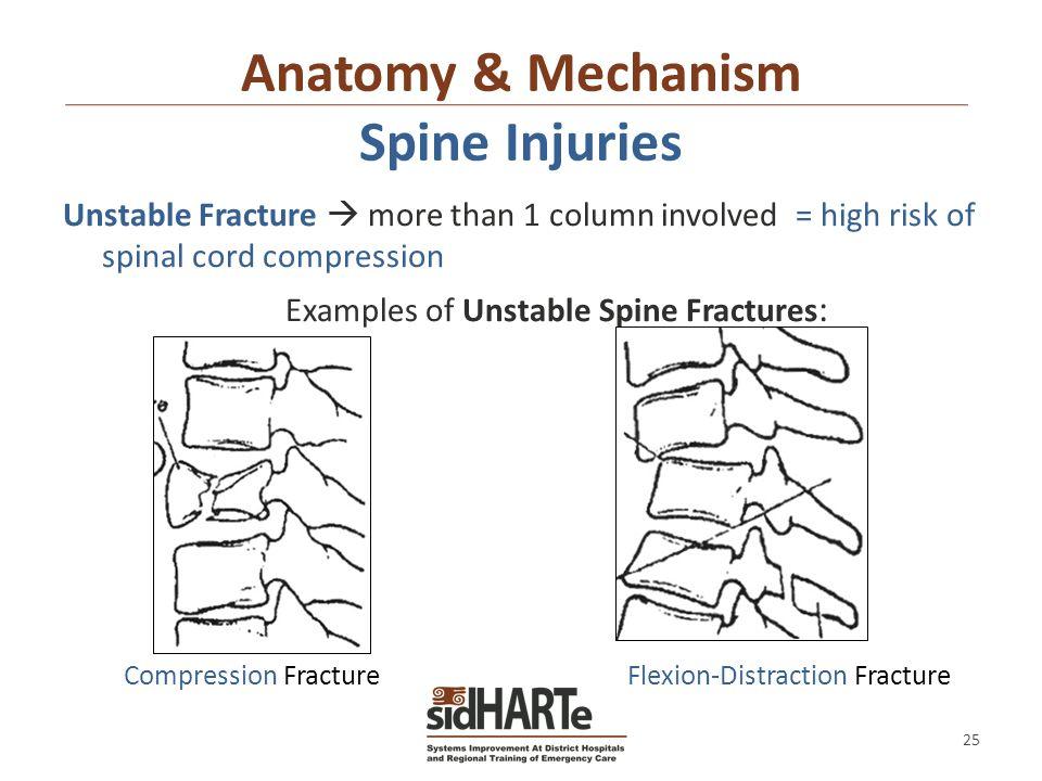 types of spinal cord injuries pdf